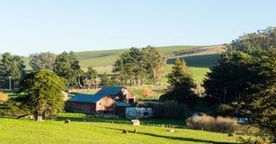 Vista del rancho en Tomales California en un día de invierno soleado fotografía de archivo libre de regalías