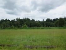 Vista del santuario de fauna nacional de Ridgefield Foto de archivo