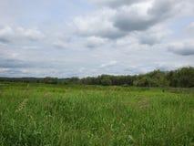 Vista del santuario di fauna selvatica nazionale di Ridgefield Immagine Stock Libera da Diritti