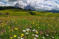 Vista del Sassolungo Langkofel e gruppo di Sassopiatto delle dolomia italiane da Alpe di Siusi in Val Gardena Fotografia Stock
