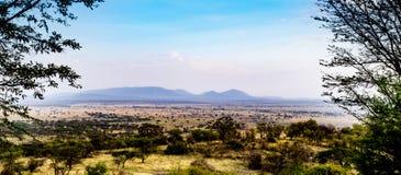 Vista del Serengeti Fotografie Stock Libere da Diritti