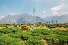 Vista del sud della natura dell'India ad estate Fotografia Stock Libera da Diritti