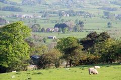 Vista del terreno coltivabile di Lancashire Fotografie Stock