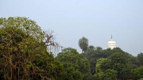 Vista del tetto del palazzo e della foresta indiani fotografia stock