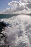 Vista del traghetto della città & del porto di Auckland, Nuova Zelanda Fotografia Stock
