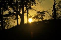 Vista del tramonto immagini stock