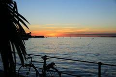 Vista del tramonto sopra un lago Nella priorità alta, in una bicicletta ed in una palma Immagine Stock Libera da Diritti