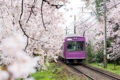 Vista del treno locale di Kyoto che viaggia sui binari con flourish Fotografia Stock
