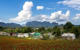 Vista del valle de Vinales, la UNESCO, Vinales, Pinar del Rio Province, Cuba, las Antillas, el Caribe, America Central imágenes de archivo libres de regalías