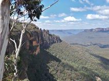 Vista del valle y de montañas con los árboles de eucalipto en un día claro del cielo azul en Jamison Valley NSW Australia Foto de archivo