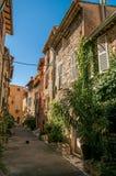Vista del vicolo con le case e le piante di pietra sotto cielo blu soleggiato in Vence Fotografia Stock