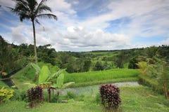 Vista del villaggio a Bali Indonesia Fotografie Stock Libere da Diritti