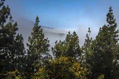 Vista del volcán de Teide, isla canaria, España Foto de archivo libre de regalías