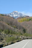 Vista del vulcano dell'Etna Immagine Stock Libera da Diritti