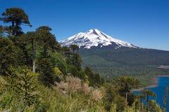 Vista del vulcano di Llaima nel Cile Immagine Stock Libera da Diritti