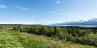 Vista del Wrangells Fotografia Stock Libera da Diritti