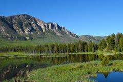 Vista del Wyoming lungo il capo Joseph Scenic Byway Immagine Stock