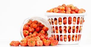 Vista delantera de dos compartimientos de tomates Fotografía de archivo