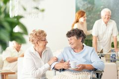 Vista delantera de dos mujeres geriátricas felices que hablan y que llevan a cabo la mano fotos de archivo libres de regalías