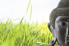 Vista delantera de la cara de Buda Fotografía de archivo libre de regalías