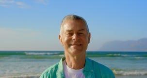 Vista delantera de la situación caucásica mayor activa del hombre en la playa 4k metrajes