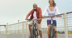 Vista delantera de los pares afroamericanos mayores activos pensativos que se colocan con la bicicleta en la 'promenade' 4k almacen de metraje de vídeo
