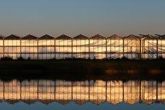 Vista delantera de un invernadero durante puesta del sol Fotografía de archivo libre de regalías