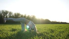 Vista delantera de una chica joven hermosa que hace voltereta afuera en el campo verde Disfruta de su tiempo Día asoleado Sonrisa almacen de video