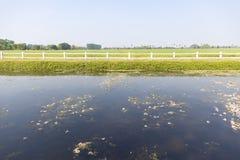 Vista delantera del campo agrícola verde con la cerca, el lago y el cielo blancos fotos de archivo