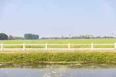 Vista delantera del campo agr?cola verde con la cerca, el lago y el cielo blancos imagenes de archivo