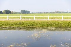 Vista delantera del campo agr?cola verde con la cerca, el lago y el cielo blancos fotos de archivo