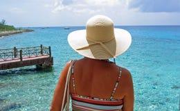 Vista dell'acqua blu Fotografie Stock Libere da Diritti