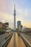 Vista dell'albero 634m del cielo di Tokyo a tempo di giorno Fotografia Stock