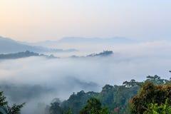 Vista dell'alte montagne in foresta pluviale tropicale coperta in nebbia Immagini Stock
