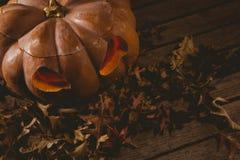 Vista dell'angolo alto della lanterna della presa o con le foglie di autunno Immagini Stock