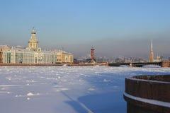 Vista dell'argine di Universitetskaya fotografia stock libera da diritti