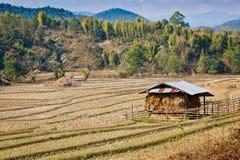 Vista dell'azienda agricola Fotografia Stock Libera da Diritti