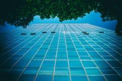 Vista dell'edificio per uffici di angolo basso da sotto un albero Fotografie Stock