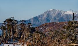 Vista dell'Himalaya innevata da un'altezza di 3250m immagini stock libere da diritti