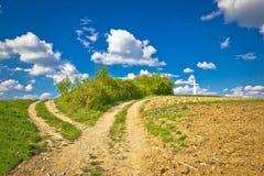 Vista dell'intersezione del percorso della campagna in natura verde Fotografia Stock