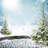 Vista dell'inverno Fotografia Stock