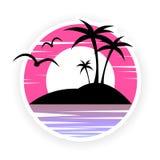 Vista dell'isola nell'oceano al tramonto, ai gabbiani ed alle palme immagini stock