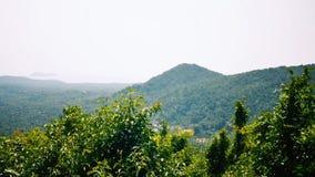 Vista dell'isola tropicale archivi video