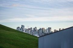 Vista dell'orizzonte di Seattle da un parco fotografia stock libera da diritti