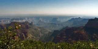 Vista dell'orlo del nord di Grand Canyon, Arizona, U.S.A. fotografia stock libera da diritti
