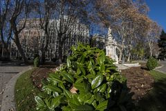 vista 180 dell'Pesce-occhio di piccolo parco sul Paseo del Prado in Immagini Stock