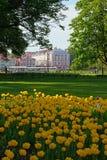 Vista dell'università che sviluppa 12 bordi sui precedenti della b fotografia stock libera da diritti