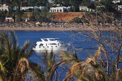 Vista dell'yacht bianco che galleggia nel mare blu fuori dalla costa dell'Egitto tramite le foglie verdi fotografia stock libera da diritti