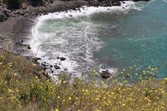 Vista della baia dal bordo della strada con i Wildflowers gialli nella priorità alta Fotografia Stock Libera da Diritti