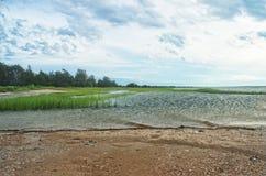 Vista della baia di Gardiners dal parco di stato della spiaggia di Oriente, Long Island, NY fotografie stock libere da diritti